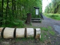 Miejsce odpoczynkowe w Lesie Murckowskim