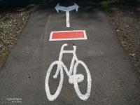 Ciekawe oznakowanie czerwonego szlaku rowerowego w Lesie Murckowskim