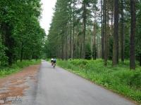 Asfaltowa droga między Kobiórem a Piaskiem
