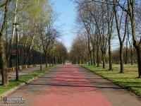 droga rowerowa w Parku Śląskim