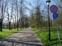 Park Śląski - aleja Gen. Jerzego Ziętka