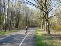 Duża Pętla Rowerowa w Parku Śląskim