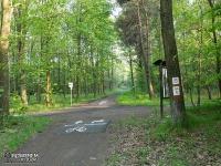 ścieżki rowerowe w lasach Murckowskich