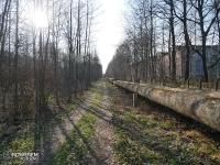żółty szlak rowerowy nr 5 w Katowicach