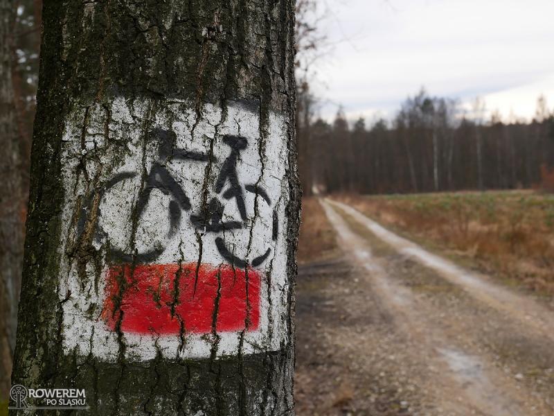 Czerwony Szlak Rowerowy Mysłowice
