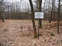 Cmentarz leśny