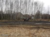 Stadnina koni w Mysłowicach