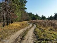 Zielony Szlak Rowerowy Mysłowice