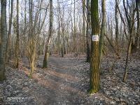 Szlak rowerowy Dawnego Pogranicza - Park Tysiąclecia