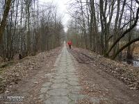 betonowe płyty na szlaku rowerowym w lesie!