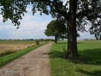 Zielony szlak rowerowy w Cielmicach