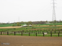 Stadnina koni w Mikulczycach