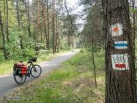 Rewelacyjna droga rowerowa między Ostrężnikiem a Żarkami