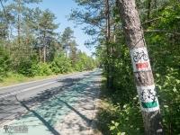 Droga rowerowa w Podlesicach