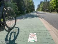 Oznakowanie na nawierzchni drogi rowerowej