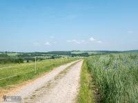 Polne drogi przed Krakowem