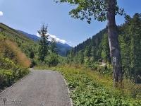 Droga szutrowa za Tatrzańską Kotliną