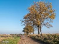 Droga z Gliwic do Szałszy