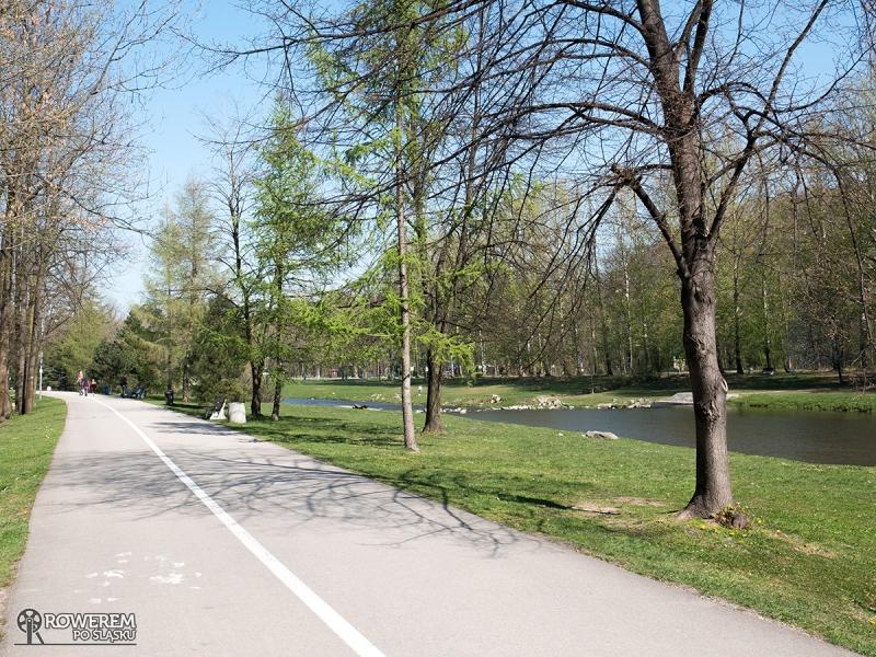 To jedyny odcinek asfaltowej drogi rowerowej na śląskim odcinku Wiślanej Trasy Rowerowej