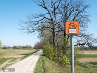 Drogi szutrowe na wałach między Zabrzegiem a Czechowicami-Dziedzicami