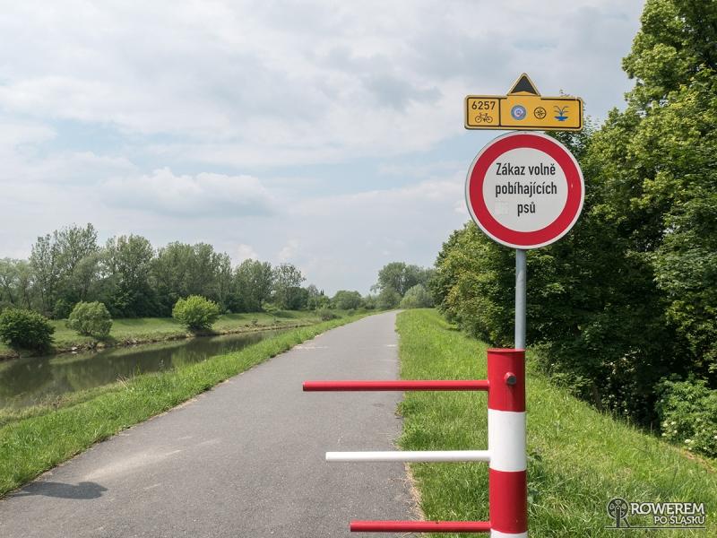 Żelazny Szlak Rowerowy - droga rowerowa wałem Olzy