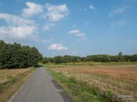 Żelazny Szlak Rowerowy - odcinek do Łazisk