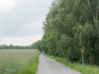 Szlakiem przez tereny zielone