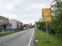 Siroczy Las, w którym szlak przekracza polsko-czeską granicę