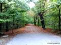 Tarnowskie Góry - Park w Reptach