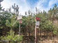Początek czerwonego szlaku rowerowego w lesie Porębskim