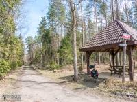 Miejsce odpoczynkowe w lesie Porębskim
