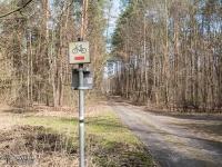 Czerwony szlak rowerowy w lesie Porębskim