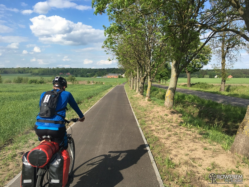 Green Velo - asfaltowe drogi rowerowe