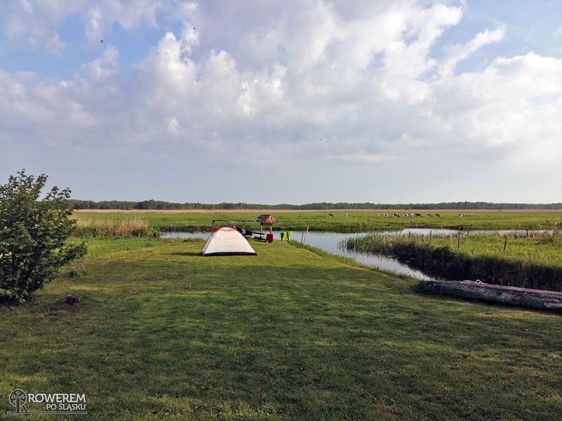 Green Velo - pole namiotowe