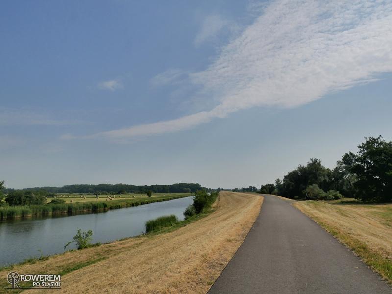Bajeczne drogi rowerowe wzdłuż Odry