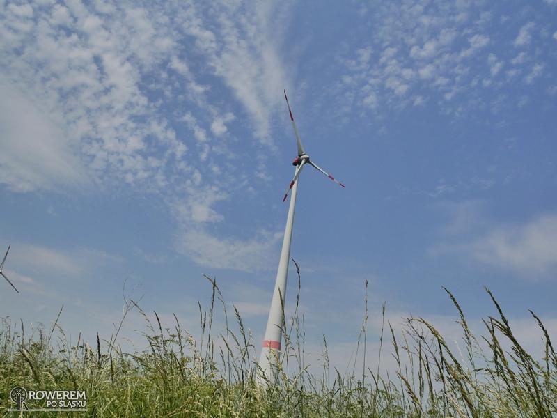 Jeden z wielu wiatraków