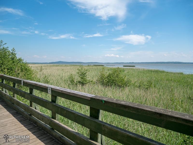 Punkt widokowy nad jeziorem Gardno