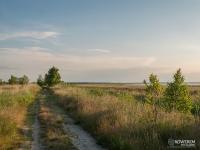 Droga polna wzdłuż jeziora Łebsko