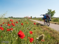 Ścieżka rowerowa na trasie linii kolejowej Swarzewo – Krokowa