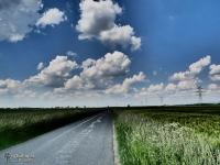 Spokojna droga między polami