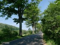 Przez Park Krajobrazowy Sudetów Wałbrzyskich