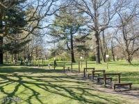 Ścieżka zdrowia w parku Świerklaniec