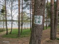 Oznakowanie Leśnej Rajzy