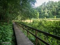 Edukacyjna Ścieżka Przyrodnicza - Dolina Trzech Stawów w Katowicach