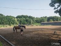 Katowicki Klub Jeździecki