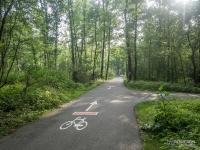Oznakowanie szlaków rowerowych - Dolina Trzech Stawów