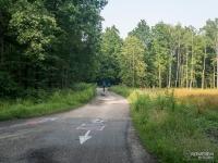 Oznakowanie szlaków rowerowych w lasach Murckowskich