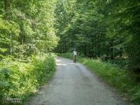 Lasy Murckowskie - droga do Rybaczówki