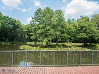 Pomost w parku Zielona