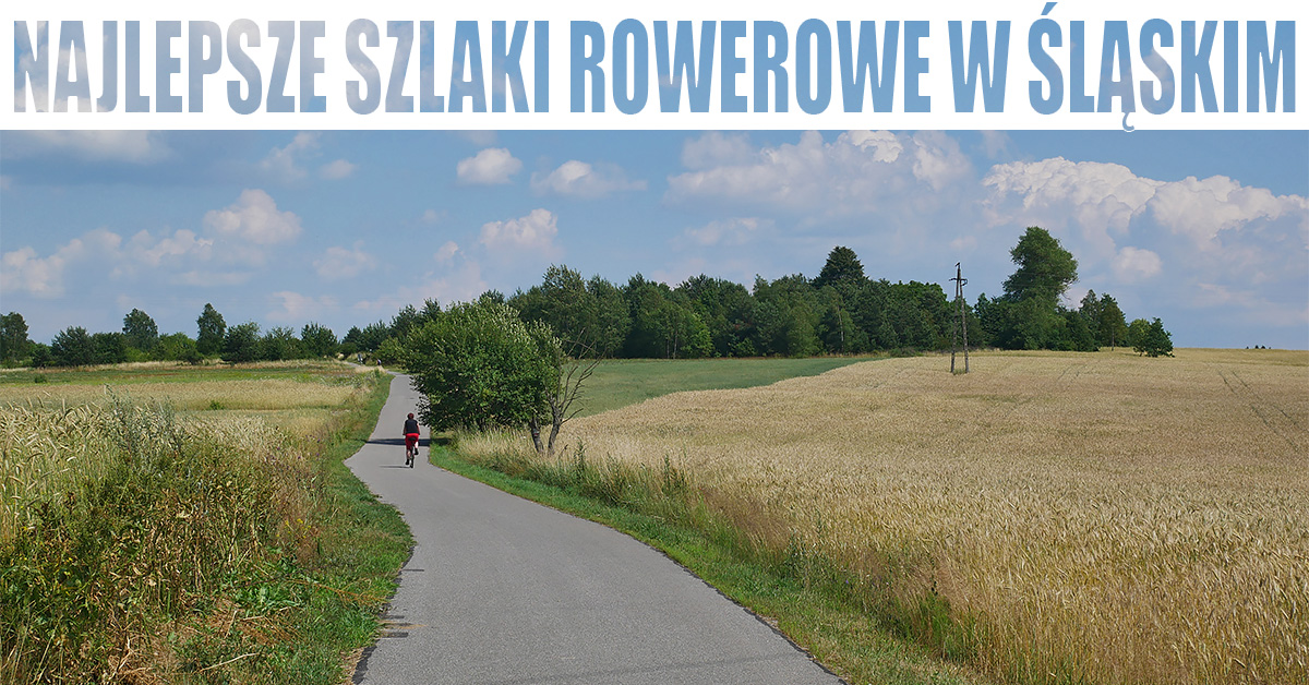Najlepsze szlaki rowerowe w śląskim